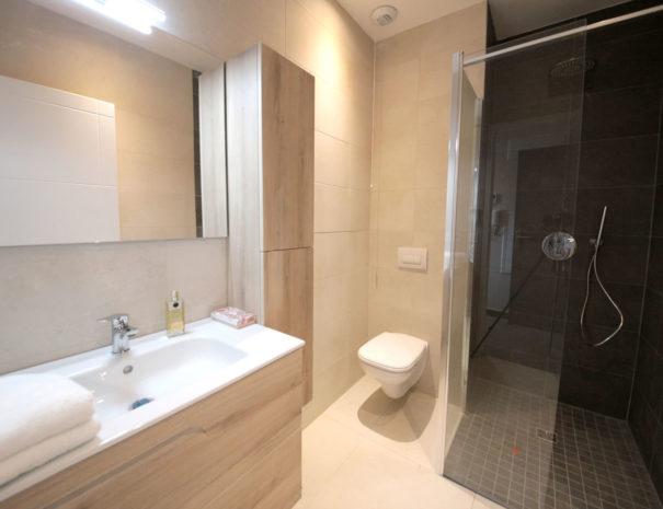 salle de bains équipée d'une douche à italienne